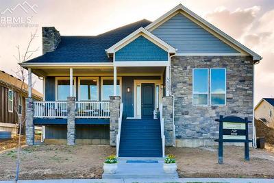 Castle Rock Single Family Home For Sale: 4318 Fell Mist Way