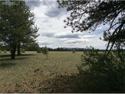 Lake George CO Residential Lots & Land For Sale: $250,000