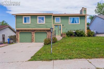 Colorado Springs Single Family Home For Sale: 4355 Scotch Pine Drive