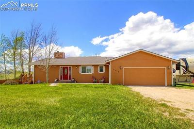 El Paso County Single Family Home For Sale: 7215 Pine Cone Road