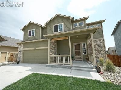 Single Family Home For Sale: 4789 San Amels Way