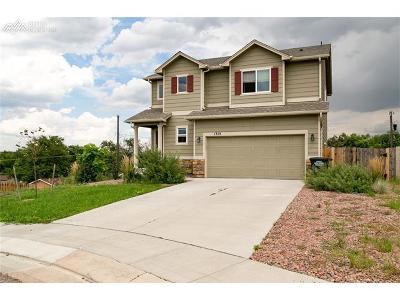 Single Family Home For Sale: 1315 Livingston Avenue