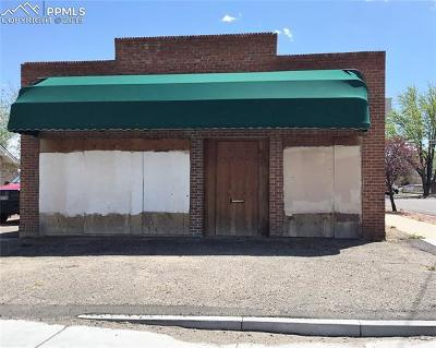 Commercial For Sale: 1502 E 4th Street