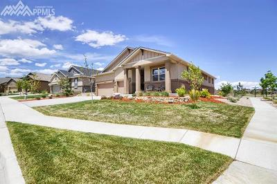 Single Family Home For Sale: 12605 Chianti Court