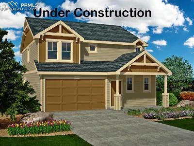 El Paso County Single Family Home For Sale: 7194 Sedgerock Lane