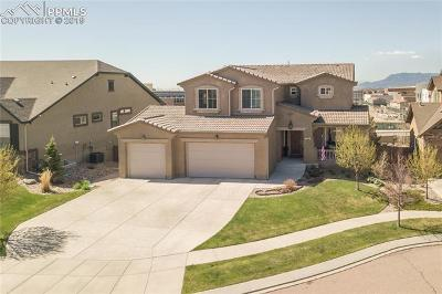 Colorado Springs Single Family Home For Sale: 5015 Gibson Lake Court