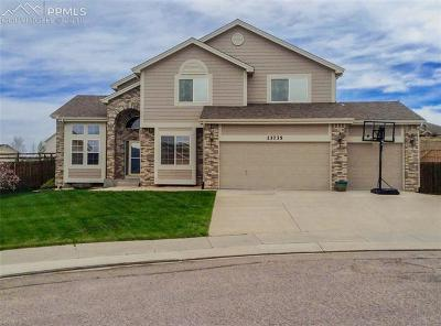 Colorado Springs Single Family Home For Sale: 13735 Sand Cherry Place