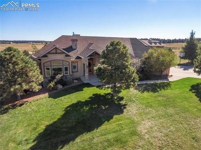 Colorado Springs CO Single Family Home For Sale: $1,750,000