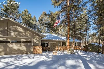 Woodland Park Single Family Home For Sale: 714 Elm Street