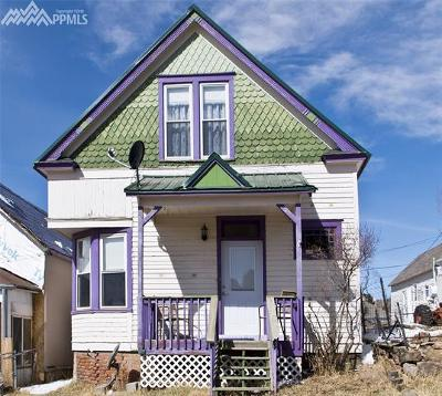 Single Family Home For Sale: 221 S Second Street