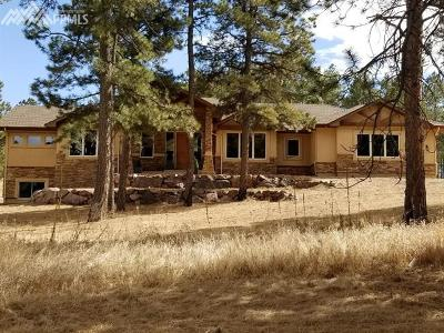 Cathedral Pines Single Family Home For Sale: 13795 Tewkesbury Court