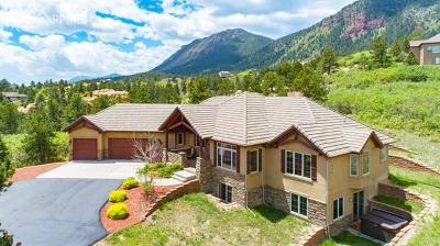 Palmer Lake Single Family Home For Sale: 4571 Red Rock Ranch Drive