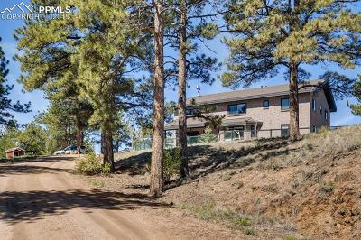 Single Family Home For Sale: 483 Pikes Peak Drive