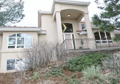 Colorado Springs Single Family Home For Sale: 115 Brigham Court