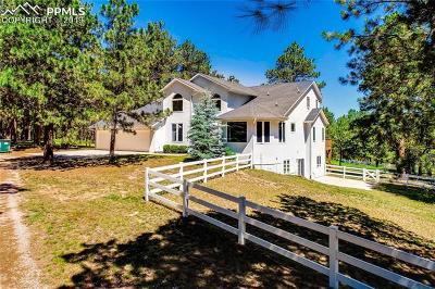 Colorado Springs Single Family Home For Sale: 19910 E Elk Creek Drive