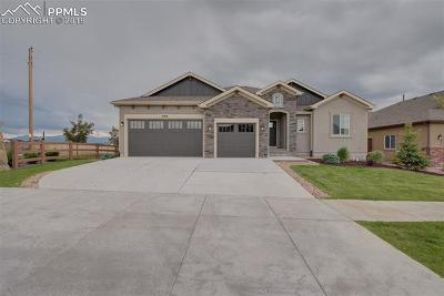 Colorado Springs Single Family Home For Sale: 8206 Misty Moon Drive