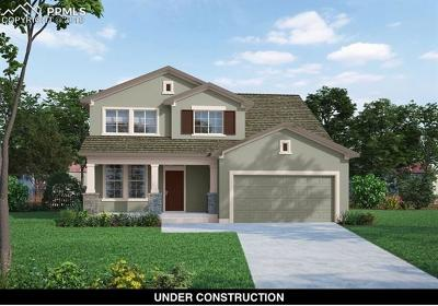 Single Family Home For Sale: 9976 Morning Vista Drive