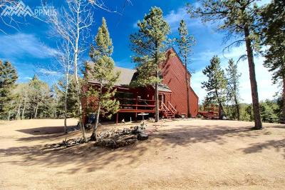 Woodland Park Single Family Home For Sale: 2100 Arapahoe Street