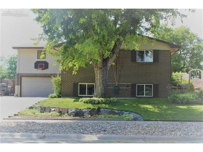 Colorado Springs Single Family Home For Sale: 912 Crown Ridge Drive