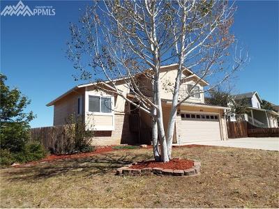 Colorado Springs Single Family Home For Sale: 635 Pennington Drive