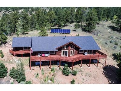 Florissant Single Family Home For Sale: 361 Crystal Peak Road