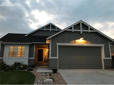 Colorado Springs Single Family Home For Sale: 10150 Coyote Gulch Court
