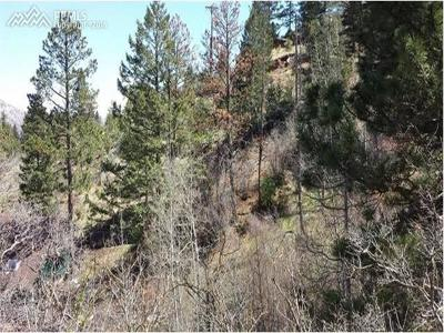 El Paso County Residential Lots & Land For Sale: 10212 Mountain Road