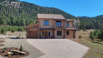 Woodland Park Single Family Home Under Contract - Showing: 841 Majestic Parkway