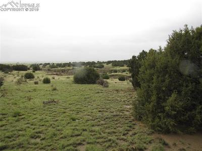 Residential Lots & Land For Sale: Tbd3 Highway 67 Highway