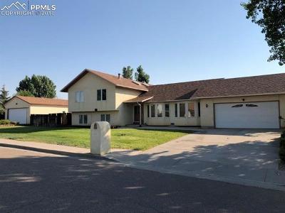 Pueblo Single Family Home For Sale: 1 Silversmith Court