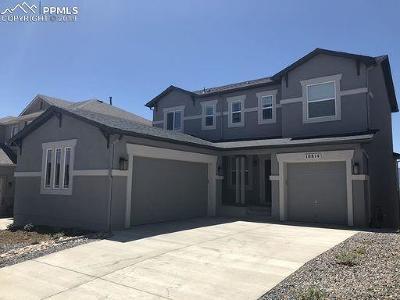 Colorado Springs Single Family Home For Sale: 10814 Warm Sunshine Drive