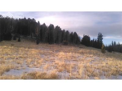 Cripple Creek Residential Lots & Land For Sale: 7777 Monarch Drive