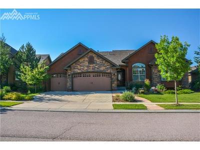 El Paso County Single Family Home For Sale: 1141 Spectrum Loop