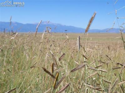 Colorado Springs Residential Lots & Land For Sale: Lot 6 S Franceville Coal Mine Road