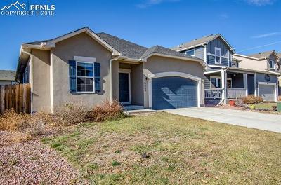 Single Family Home For Sale: 6662 Stingray Lane