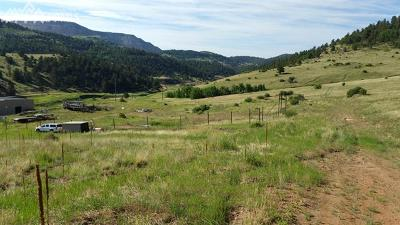 Cripple Creek Residential Lots & Land For Sale: Colorado Avenue