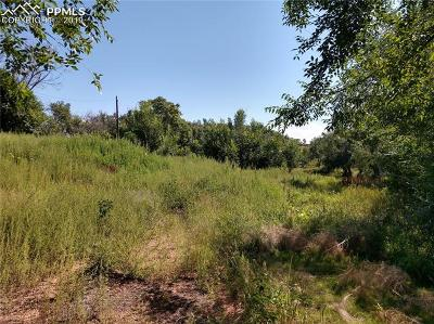 Colorado Springs Residential Lots & Land For Sale: 890 Promontory Rock Grove