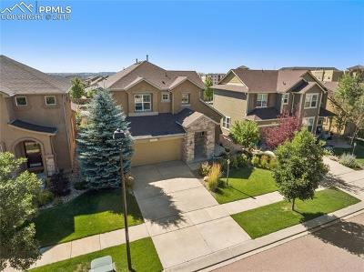 Colorado Springs Single Family Home For Sale: 5019 Petrified Forest Trail