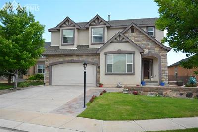 Colorado Springs Single Family Home For Sale: 4255 Apple Hill Court
