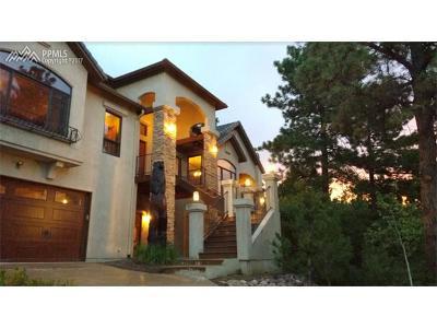 Colorado Springs Single Family Home For Sale: 340 Ellsworth Street