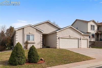 Colorado Springs Single Family Home For Sale: 2320 Pinhigh Court