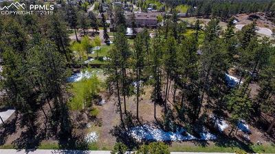 Woodland Park Residential Lots & Land For Sale: 635 Meadowlark Lane