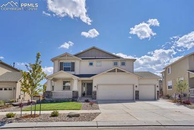 Colorado Springs Single Family Home For Sale: 5467 Paddington Creek Place