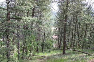 Cascade Residential Lots & Land For Sale: 9320 Maveta Road