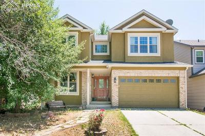 Colorado Springs Single Family Home For Sale: 1343 Chesham Circle