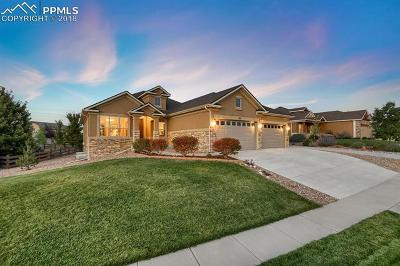Colorado Springs Single Family Home For Sale: 373 Coyote Willow Drive