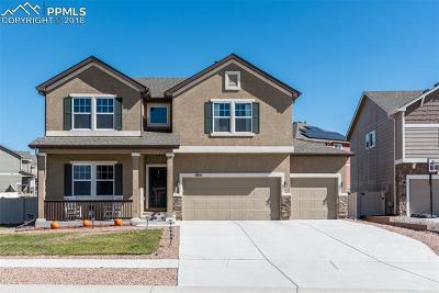 Colorado Springs Single Family Home For Sale: 8611 Dry Needle Place