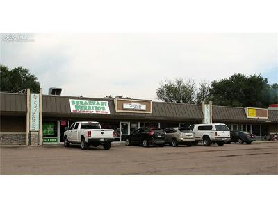 Commercial For Sale: 212 N Union Boulevard