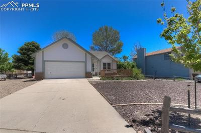 Colorado Springs Single Family Home For Sale: 8135 Tulip Tree Court