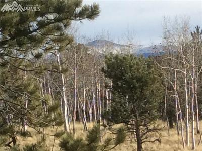 Lake George Residential Lots & Land For Sale: 771 Cheyenne Creek Drive